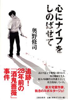 心にナイフ - コピー.JPG